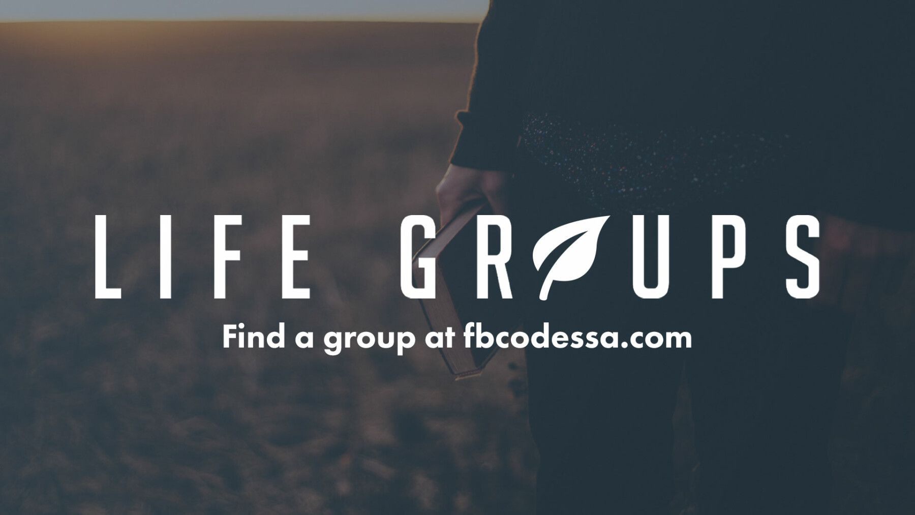 Adult Life Groups and Challenge Groups